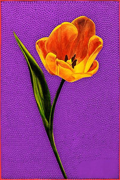 Tulip 600 progress3